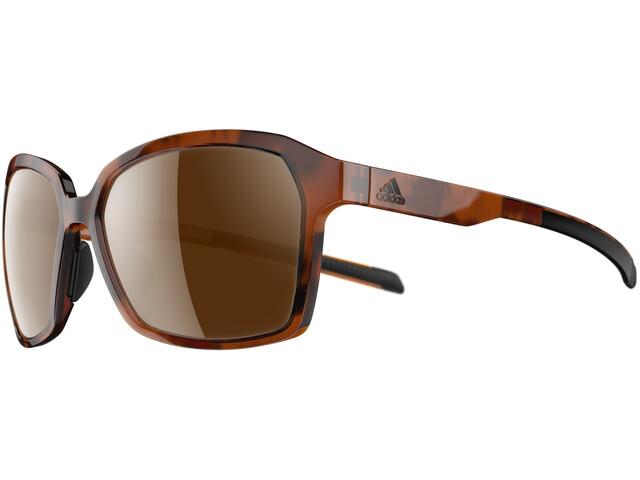 adidas Aspyr Glasses havanna/lst contrast silver